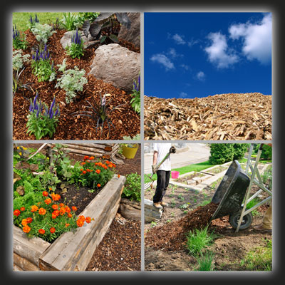 Compost-Mulch